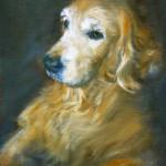 Pet Portrait of Golden Labrador Retriever by Jill Brabant